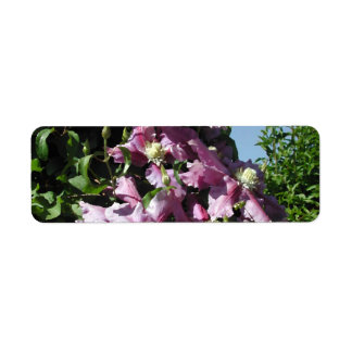 Clematis Pink Flowers and blue sky Custom Return Address Labels