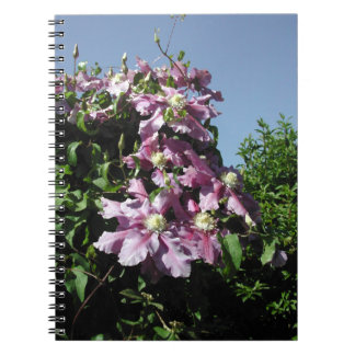 Clematis. Pink Flowers, and blue sky. Spiral Notebooks