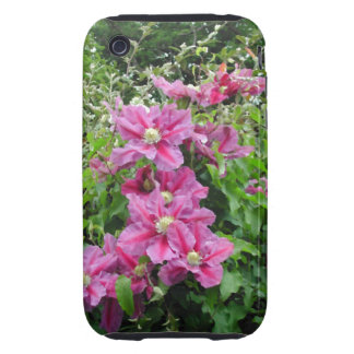 Clematis. Pinky Purple Flowers. Feminine. Tough iPhone 3 Cases