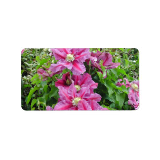 Clematis Pinky Purple Flowers Feminine Personalized Address Labels