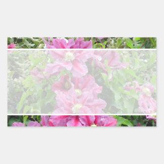 Clematis. Pinky Purple Flowers. Feminine. Rectangular Sticker
