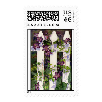 Clematis Postage