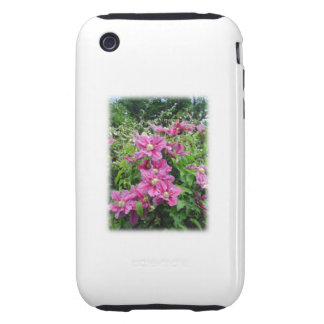 Clematis. Pretty Pink - Purple Flowers. iPhone 3 Tough Cases