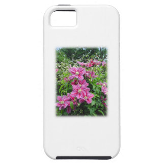 Clematis. Pretty Pink - Purple Flowers. iPhone SE/5/5s Case