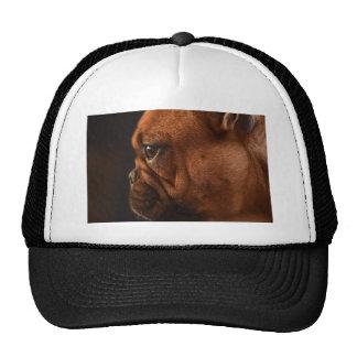 Clementine Trucker Hat
