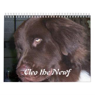 Cleo el perro de Terranova Calendarios