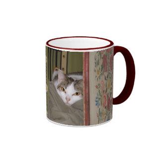 Cleo la taza del gato