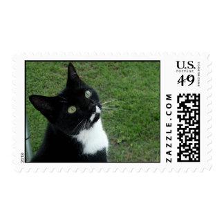 Cleo Postage Stamp