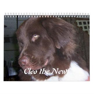Cleo the Newfoundland dog Calendar