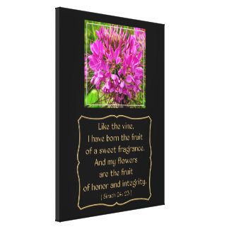 Cleome Flower with Bible Verse from Sirach 24: 23 Canvas Print