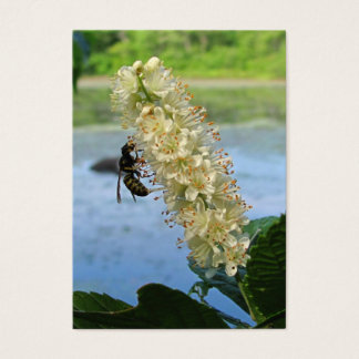 Clethra & Wasp ~ ATC Business Card
