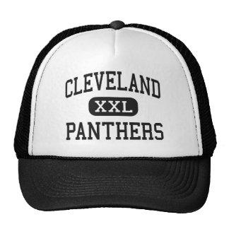 Cleveland - Panthers - High - Cleveland Alabama Mesh Hat