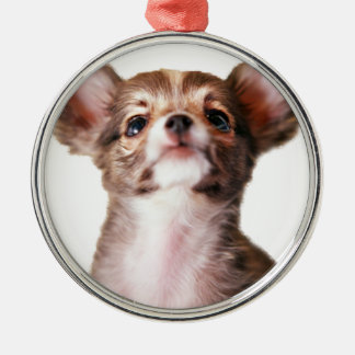 Clever Dog Metal Ornament