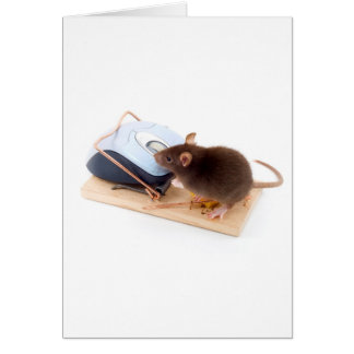 Clever Mouse Card