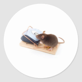 Clever Mouse Round Sticker