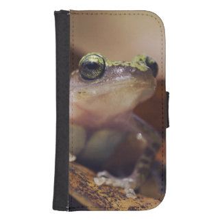 Cliff Chirping Frog, Eleutherodactylus Galaxy S4 Wallet