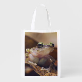 Cliff Chirping Frog, Eleutherodactylus Grocery Bag