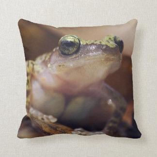 Cliff Chirping Frog, Eleutherodactylus Pillow