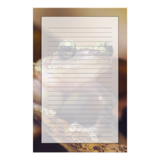 Cliff Chirping Frog, Eleutherodactylus Stationery