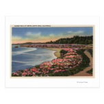 Cliff Drive View of Ocean, Beach, & Flowers Post Cards