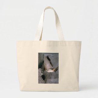 Cliff Swallow approaching nest Canvas Bags