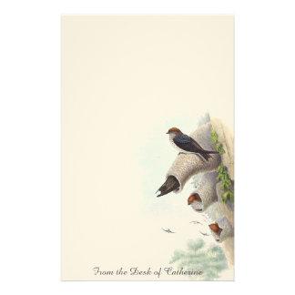 Cliff Swallow Birds Animals Wildlife Stationery