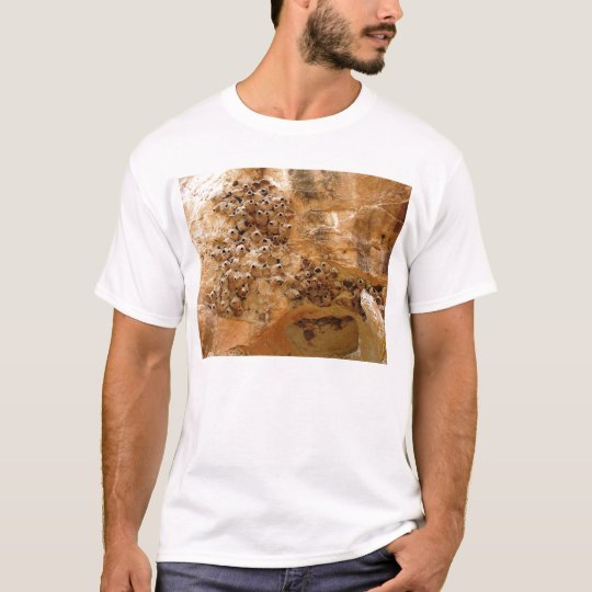 Cliff Swallow Nests T-Shirt