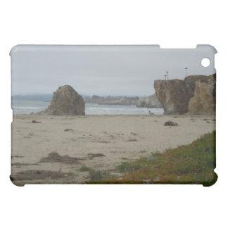 Cliffs Along Pismo Beach Shoreline iPad Mini Cases