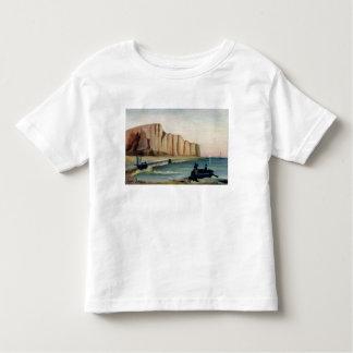 Cliffs, c.1897 toddler t-shirt