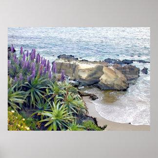 Cliffside Ocean View Poster