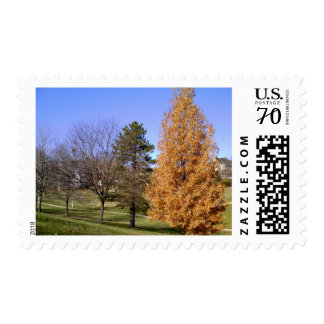 Clifton Heights St Louis, Mo Park Postage
