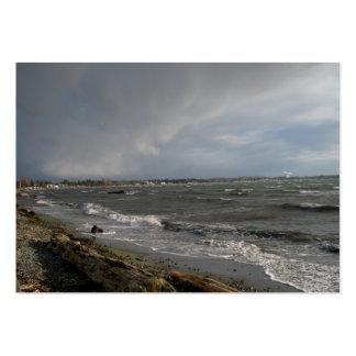 Clima tempestuoso tarjeta de visita