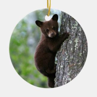 Climbing Bear Cub Ceramic Ornament