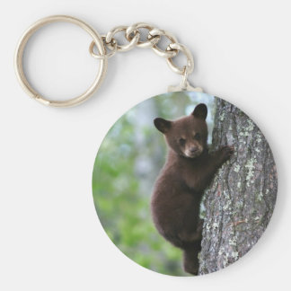 Climbing Bear Cub Keychain