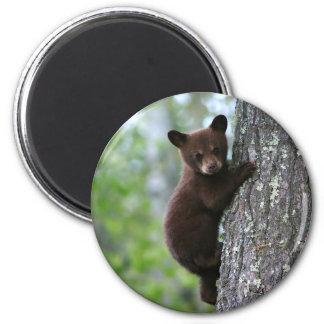 Climbing Bear Cub Magnet