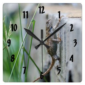 Climbing Eastern Fence Lizard Square Wall Clock