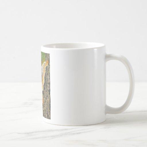 Climbing in the Fall Classic White Coffee Mug