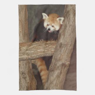 Climbing Panda Towel