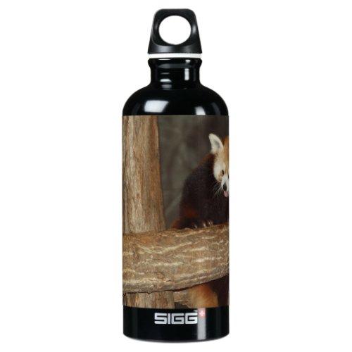 Climbing Panda Water Bottle