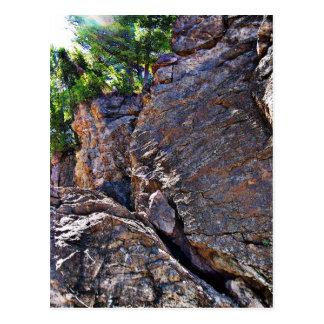 Climbing Rocks And Trees Postcard