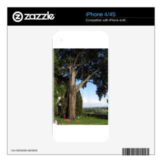 Climbing ropes hanging from a big tree iPhone 4S decal