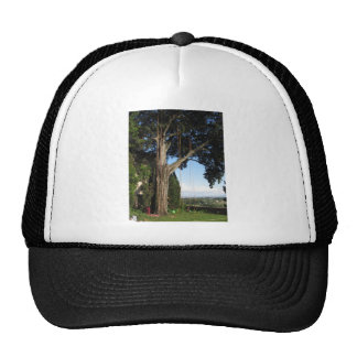 Climbing ropes hanging from a big tree trucker hat