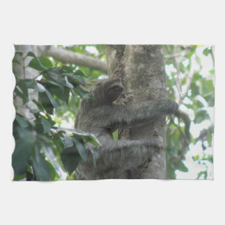 Climbing Sloth Kitchen Towel