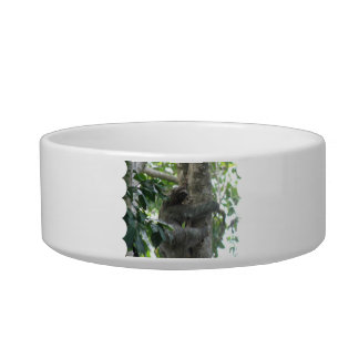Climbing Sloth Pet Bowl