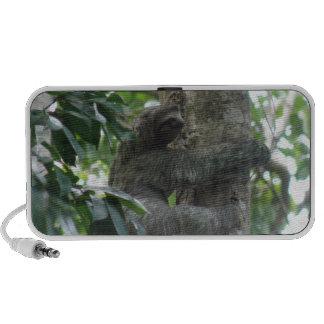 Climbing Sloth Portable Speakers