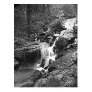 Climbing the Falls Postcard
