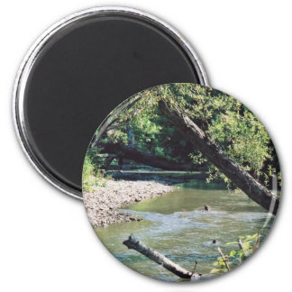 Clinch River Scenic Magnets