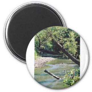 Clinch River Scenic Fridge Magnet
