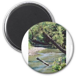 Clinch River Scenic Refrigerator Magnet