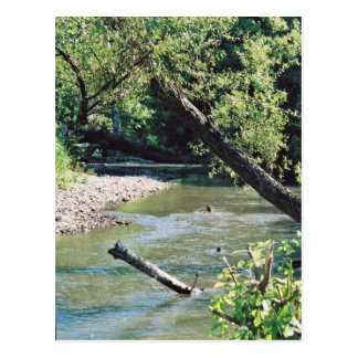 Clinch River Scenic Post Cards